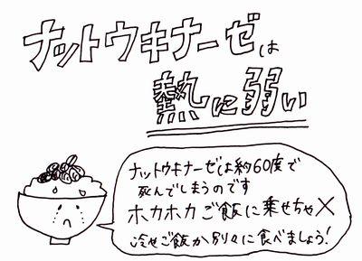 「納豆」でダイエットを成功させるための3つのポイント
